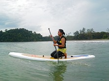 Our SUP boards accommodate beginners and pros alike